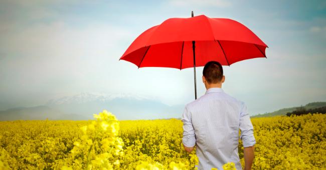 In der Kategorie Versichern erfahren Sie erprobte Herangehensweisen beim Thema Versichern und Versicherungen, damit Sie maximal davon profitieren.